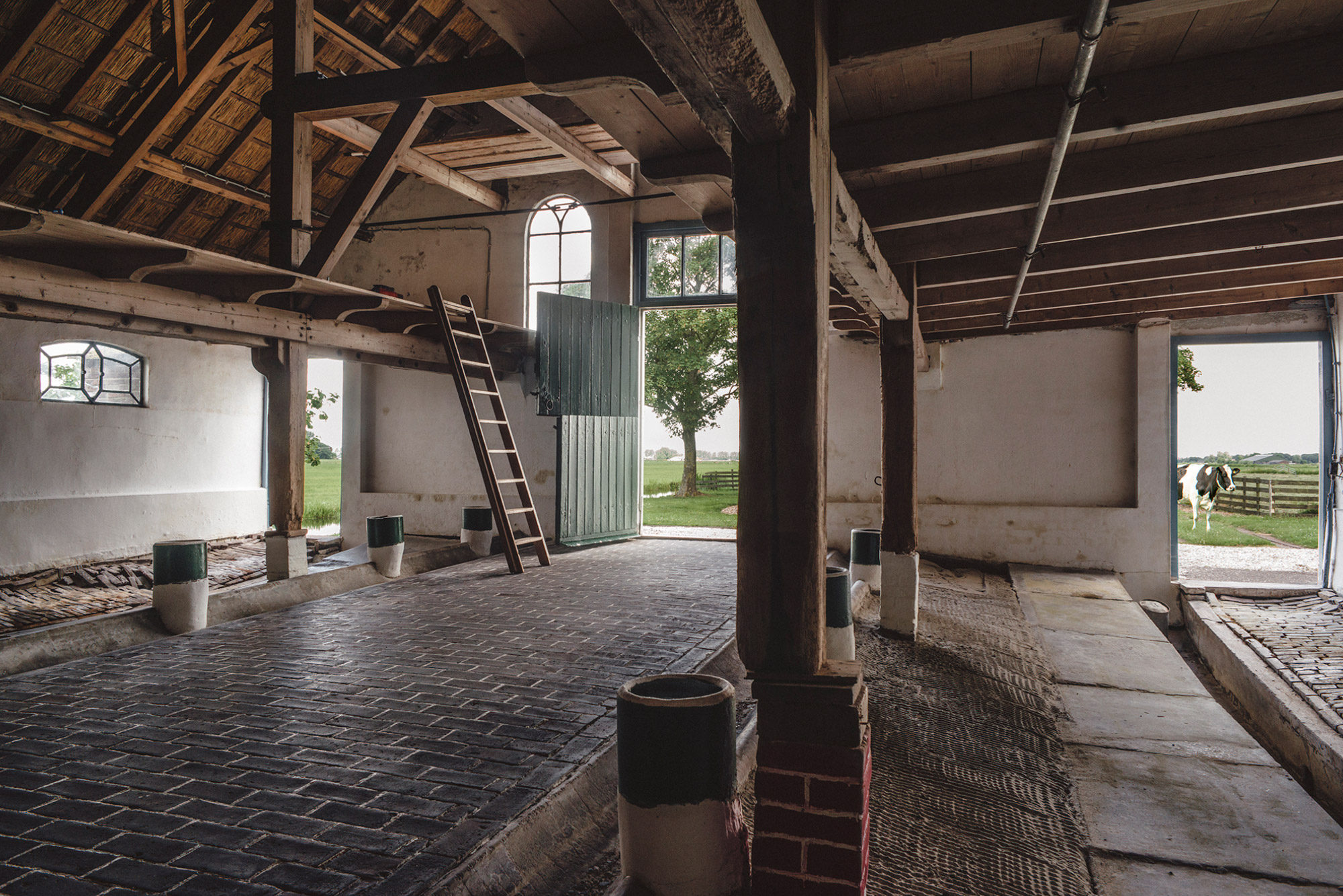 Interieurfoto van een oude koeienstal in het Groene Hart